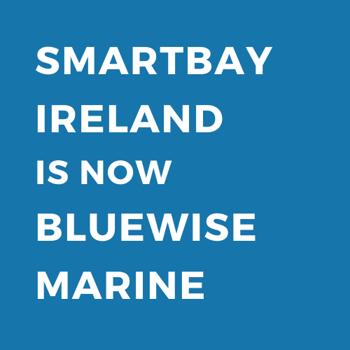 SmartBay_BlueWise_Transition Graphic.png